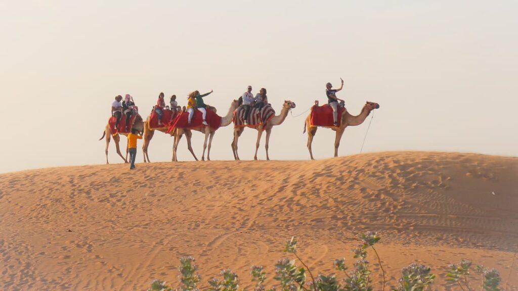 Adventurous Activities at the Desert Safari