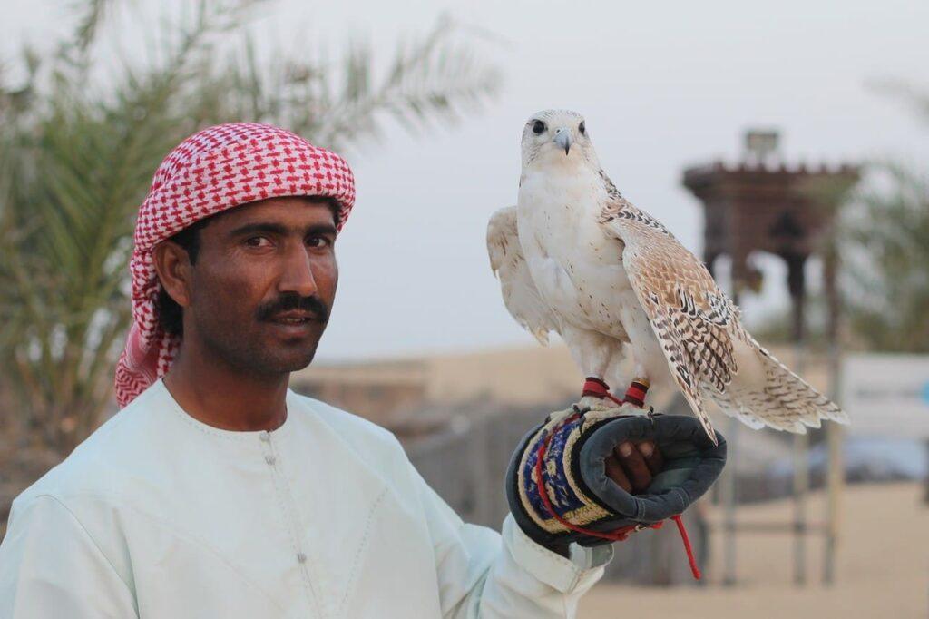 Entertainment Activities at the Desert Safari