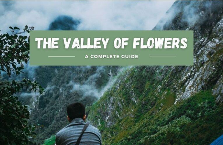 Valley Of Flowers Trek [Uttarakhand] - A Complete Guide